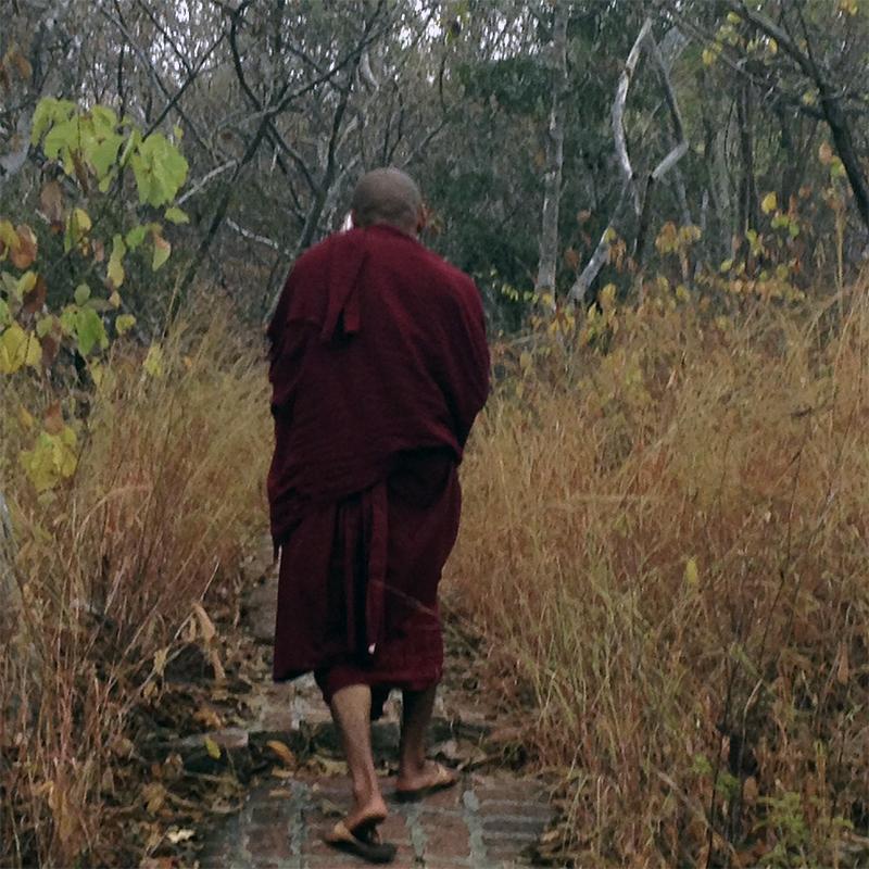 paseo-con-monje-budista